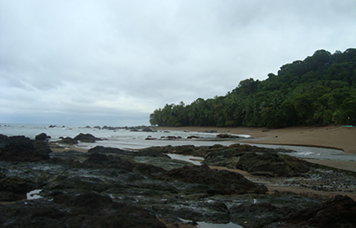 Corcovado National Park Tour
