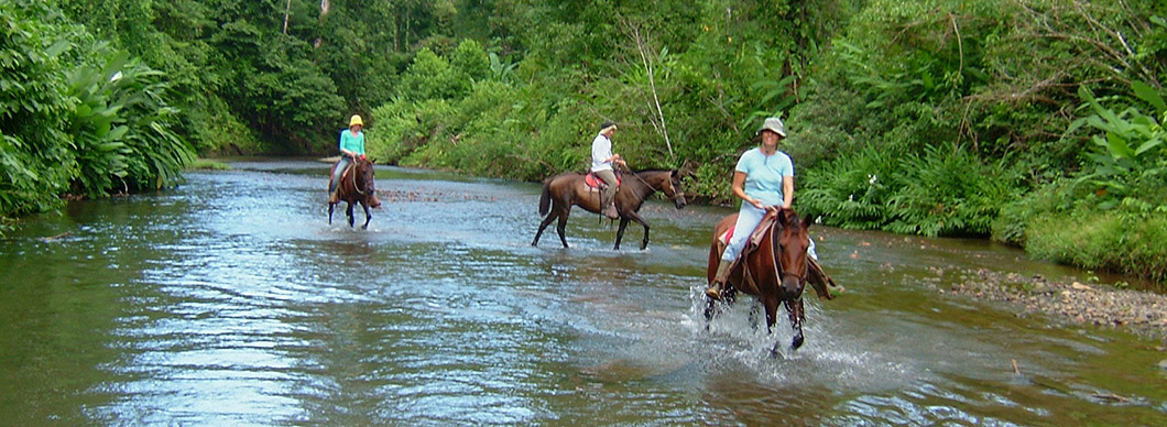 Horseback riding tours, vacations in costa rica