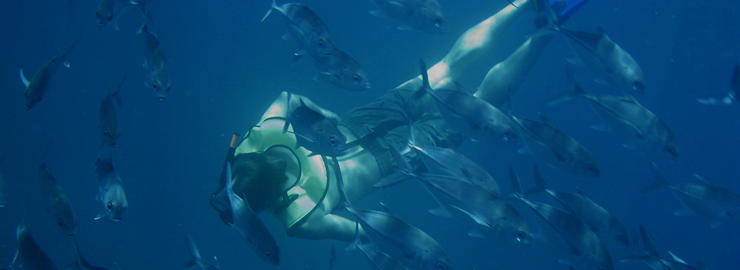 Snorkeling Cano Island tours, vacations in costa rica